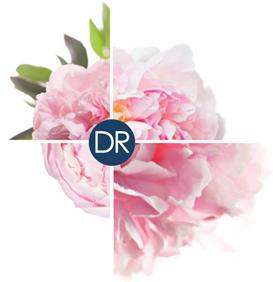 logo docteur renaud